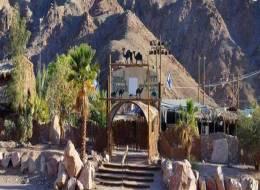 Экскурсия на верблюдах и дегустация сыров-252