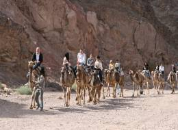 Экскурсия на верблюдах и дегустация сыров-257