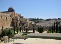 Иерусалим-Индивидуальная-346