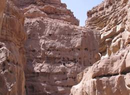 Красный каньон-518