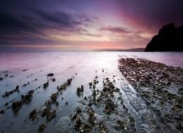 Мёртвое море-96